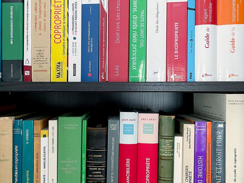 Droit des professions immobilières et de la responsabilité civile des professionnels de l'immobilier